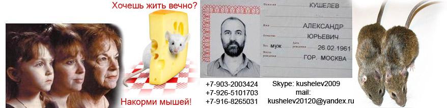 http://nanoworld.narod.ru/0.jpg